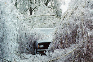 ice storm, wikipedia