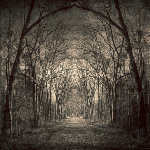Path of Nightmares, perception-obscure.deviantart.com