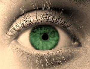 green-eyed monster. https://www.google.com/url?sa=i&rct=j&q=&esrc=s&source=images&cd=&cad=rja&uact=8&ved=0CAYQjB1qFQoTCJ_Bo8ub98YCFRVaiAodiAgNZQ&url=http%3A%2F%2Fwww.marilynstowe.co.uk