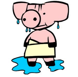sweat like a pig, everyday-idioms.blogspot.com