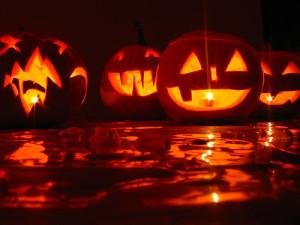 Halloween pumpkins, Flickr