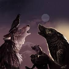 evening howling, werewolves, www.fanpop.com