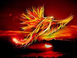 the phoenix, pixabay