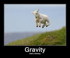 gravity, flickr