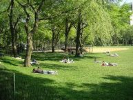 beautiful spring day in Central Park, flickr